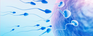 How to Solve the Problem of Male Infertility?